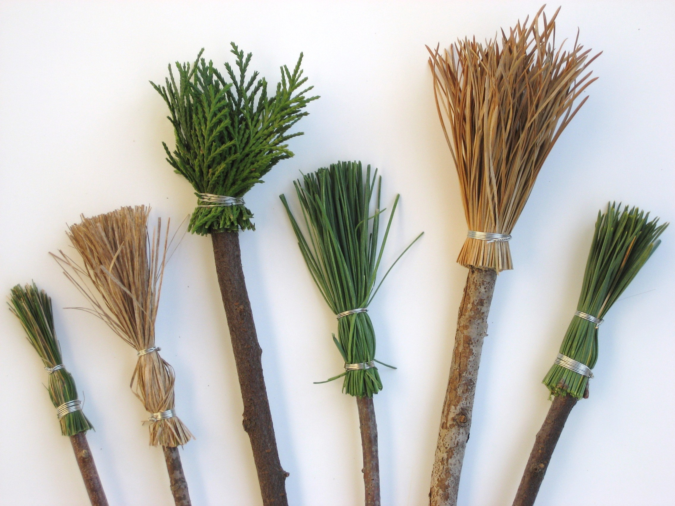 Making Paintbrushes With Natural Materials Doodles And Jots