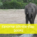 Favorite Books with Flaps