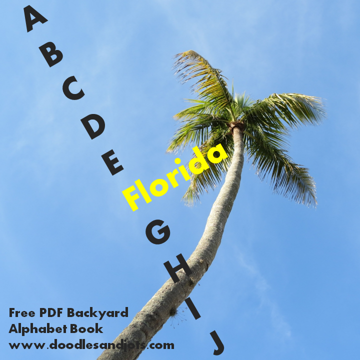 Florida ABC Book